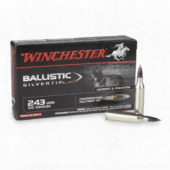 Winchester Ballistic Silvertip, .243 Winchester, Bst, 55 Grain, 20 Rounds