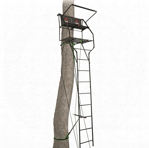 Primal Tree Stands 18' Double Vantage Deluxe Two-man Ladder Tree Stand With Jaw And Truss System