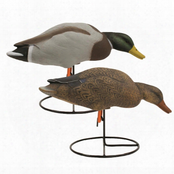 Tanglefree Pro Series Full Body Mallard Feeder Decoys, 6 Pack