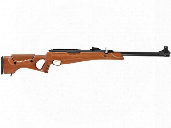 Proxima Turkish Walnut Air Rifle