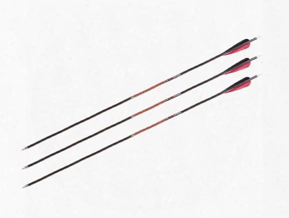 """Marksman Pocket Hunter 31"""" Carbon Arrows, 3 Pack"""