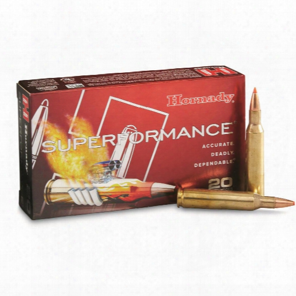 Hornady Superformance, .257 Robert +p, Sst, 117 Grain, 20 Rounds