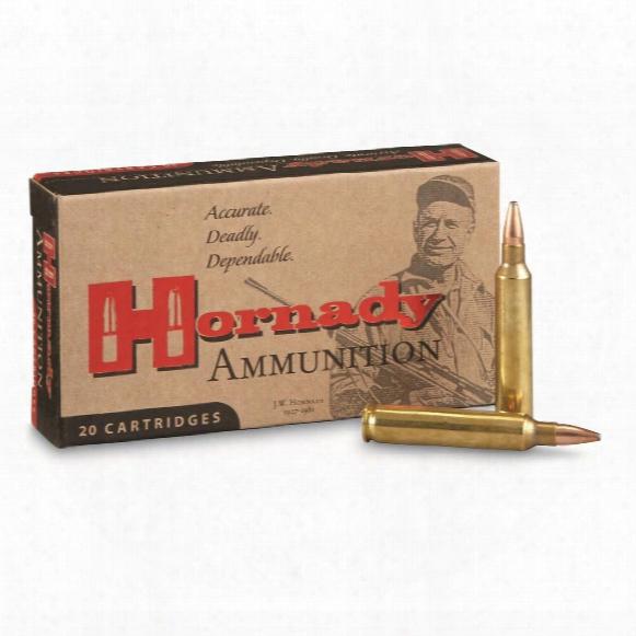 Hornady Varmint Express, .204 Ruger, Sp, 45 Grain, 20 Rounds