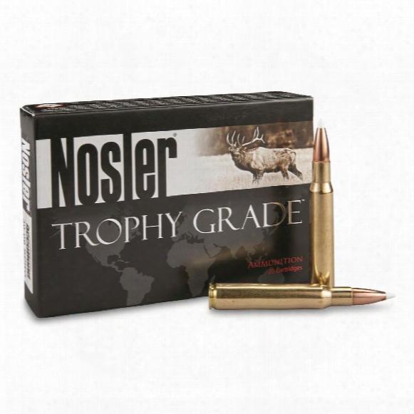 Nosler® Trophy Grade .30-06 Sprg.® 165 Grain Ab 20 Rounds
