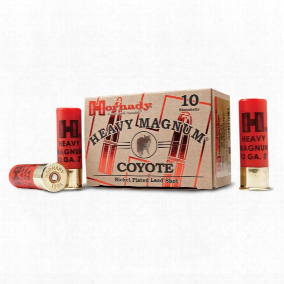 "10 Rounds Of Hornady Heavy Magnum Coyote 3"" Nickel-plated Bb Lead Shot"