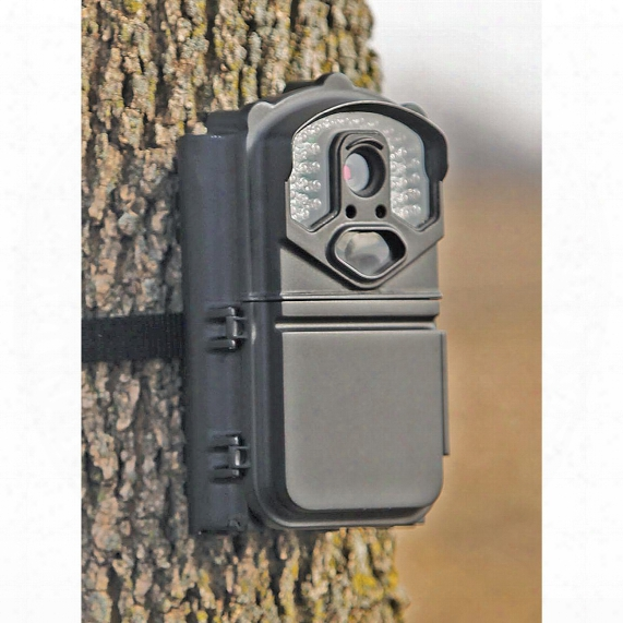 Big Game Eyecon Quickshot Infrared Trail/game Camera, 5mp