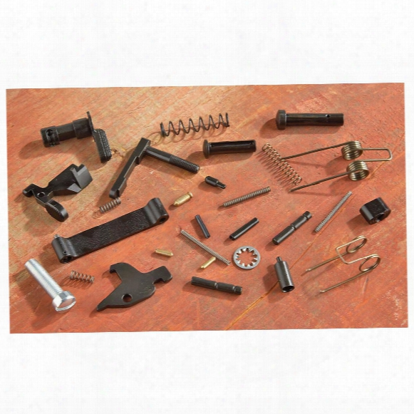 Dpms Lower Receiver Small Parts Kit Less Triggdr Group And Grip