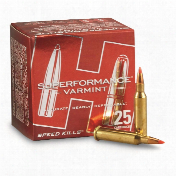 Hornady Superperformance Varmint, .17 Hornet, V-max Bt, 20 Grain, 25 Rounds