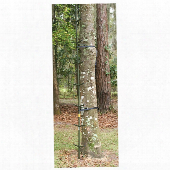 Ol'man Outdoors 20' Surefoot Stick Ladder