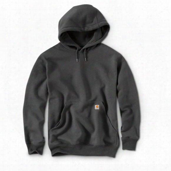 Carhartt Rain Defender Paxton Heavyweight Hooded Sweatshirt