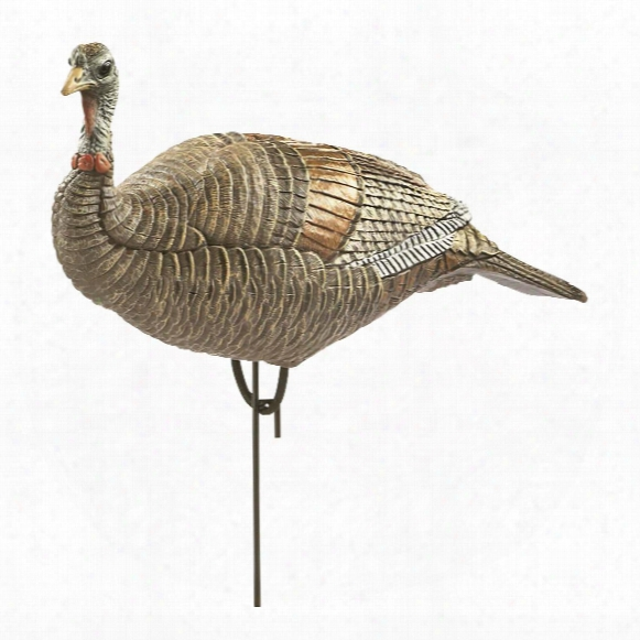 Dakota Decoy Company Dual-purpose Hen Turkey Decoy