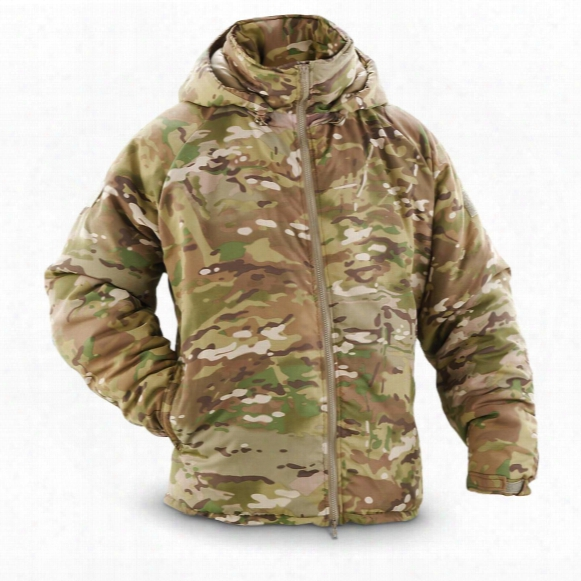 U.s. Military Surplus Primaloft Hooded Jacket, New