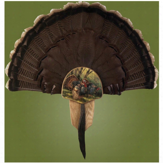 "Walnut Hollow Oak ""spring Strut"" Turkey Fan Mounting Kit"
