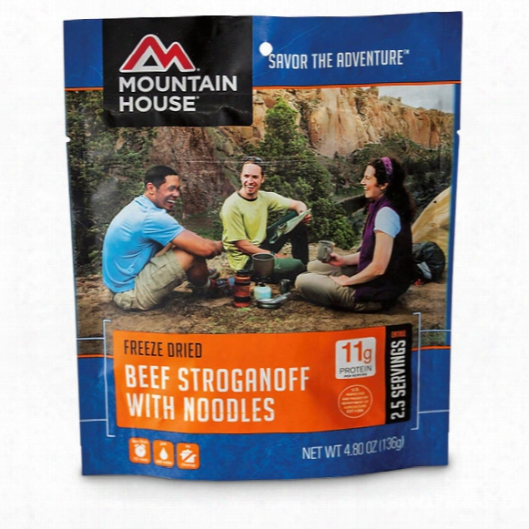 Mountain House Camp Food Freeze-dried Beef Stroganoff, 2 Pouches