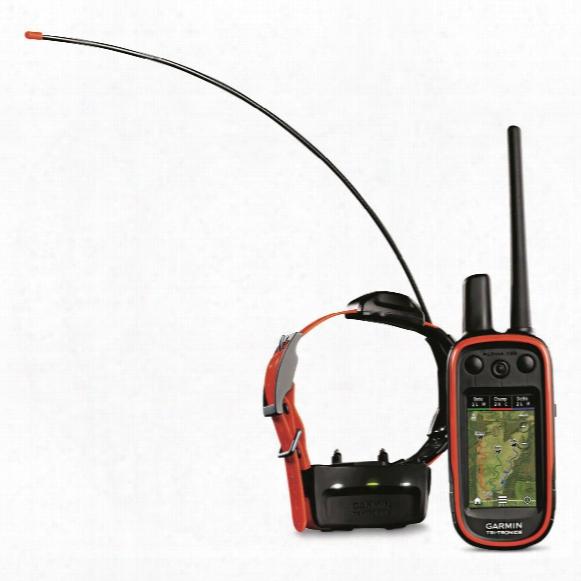 Garmin Alpha 100 Tt 15 Dog Training And Tracking System, 010-01041-50