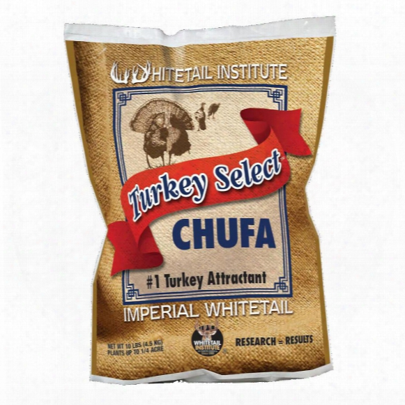 Whitetail Institute Turkey Select Chufa Seeds, 10 Pounds
