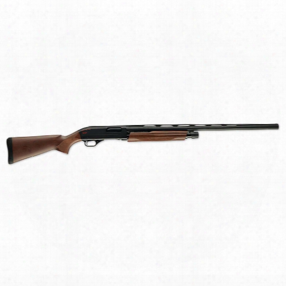 "Winchester Sxp Field, Pump Action, 12 Gauge, 28"" Barrel, 4+1 Rounds"