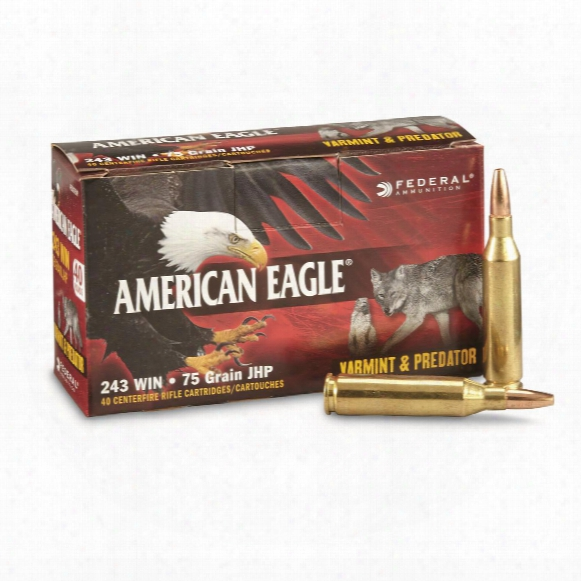 Federal American Eagle Varmint &ampa;mp;amp; Predator, .243 Winchester, Jhp, 75 Grain, 40 Rounds