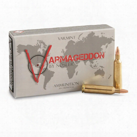 Nosler Varmageddon, .22-250 Remington, Bhp, 55 Grain, 20 Rounds