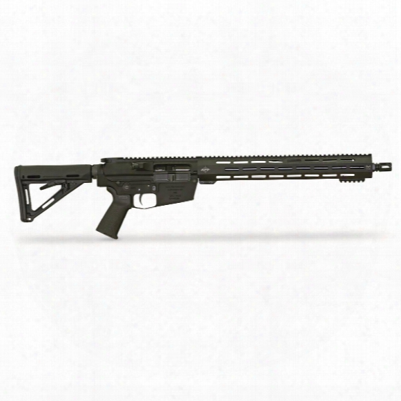 "Apf Econo Carbine, Semi-automatic, .308 Winchester, 16"" Barrel , 10+1 Rounds"