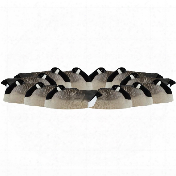 Dakota Decoy Canada Goose Sleeper Shell Decoys, 12 Pack