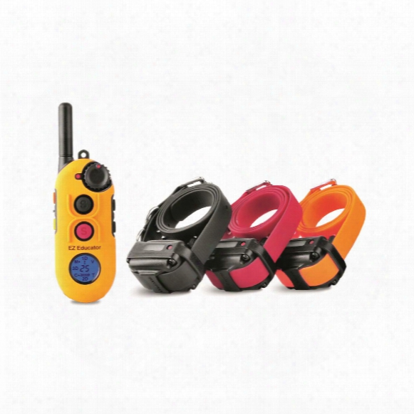 E-collar Easy Educator Ez-903 3 Dog Training Collar System
