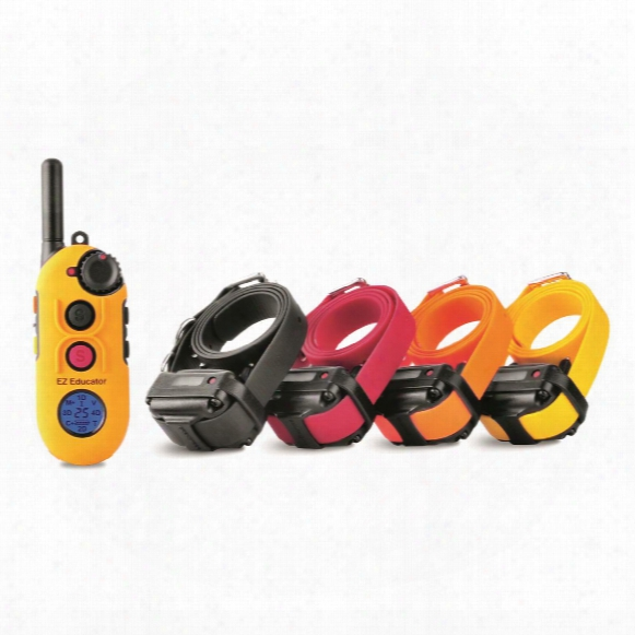 E-collar Eazy Educator Ez-904 4 Dog Training Collar System