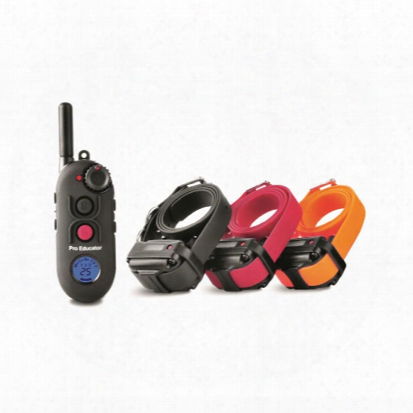 E-collar Pro Educator Pe-903 Advanced Remote 3 Dog Training System