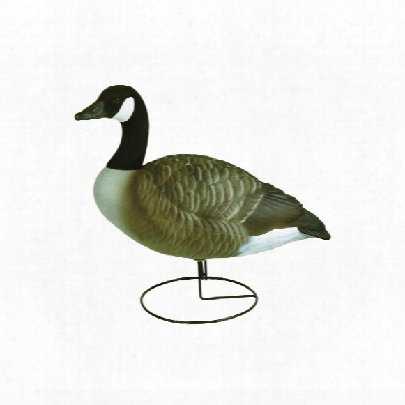 Flambeau Stormfront Full Body Canada Goose Active Decoys, 4 Pack