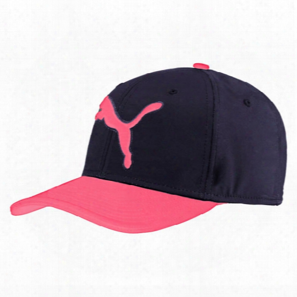 Puma Men's Gotime Hat
