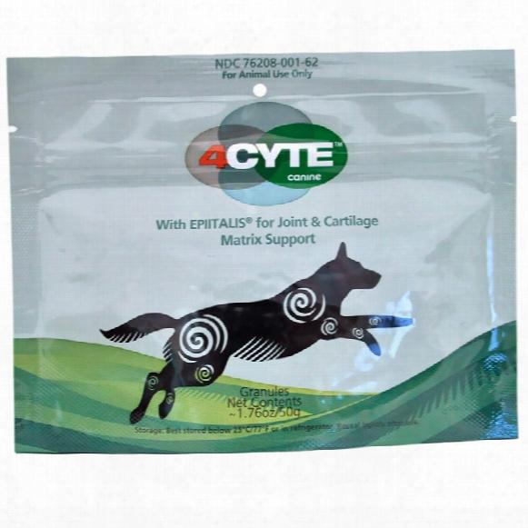 4cyte Canine (50 Gm)