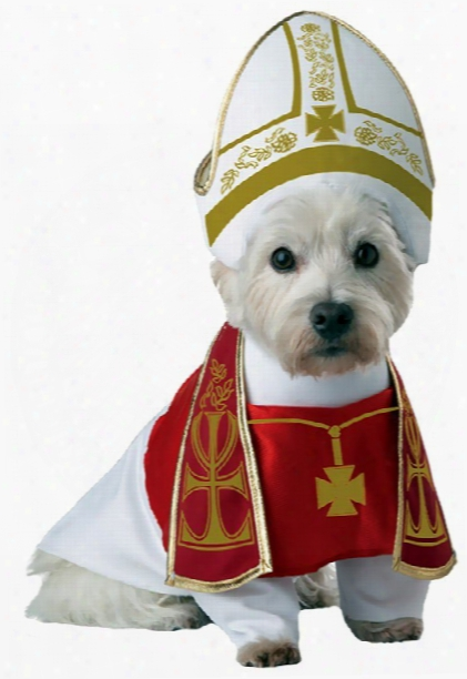 Animal Planet Holy Hound Dog Costume - X-small