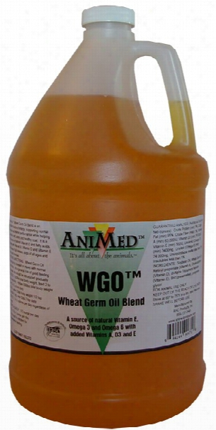 Animed Wheat Germ Oil Blend (2.5 Gallon)