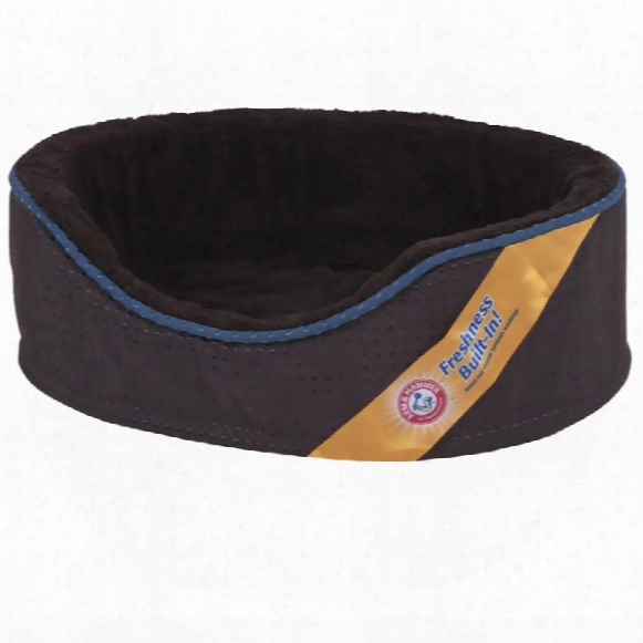 """Arm & Hammer Lounger Plush/suede 18""""x14""""x5&qukt; - Assorted"""