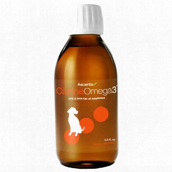 Ascenta Canine Omega-3 (6.8 Oz)