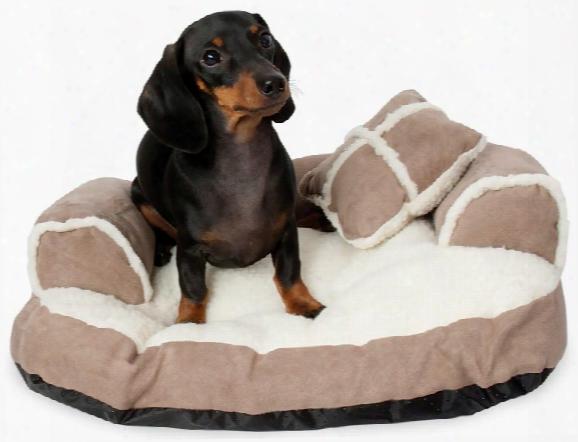 "Aspen Pet Sofa Bed With Bonus Pillow (20"" X 16"") - Assorted Colors"