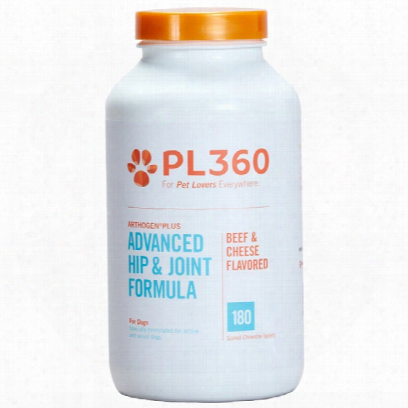 Pl360 Arthogen Plus Advanced Hip & Joint Foormula For Dogs- Beef & Cheese Flavor (180 Chewable Tablets)