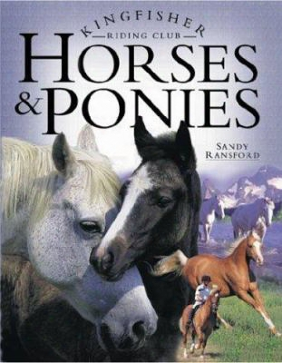 Riding Club Horses & Pon