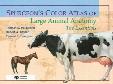 Spurgeon's Color Atlas of Large Animal Anatomy: The Essentials