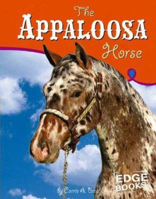 The Appaloosa Horse
