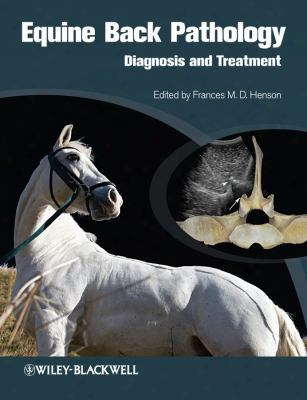 Equine Back Pathology: Diagnosis And Treatment