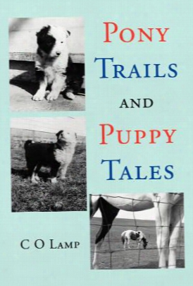 Pony Trails And Puppy Tales