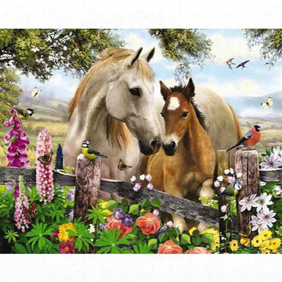 Flower Bird Horse Animal Diy Diamond Painting Embroidery 5d Cross Stitch Crystal Square Home Bedroom Wall Art Decoration Decor Craft Gift