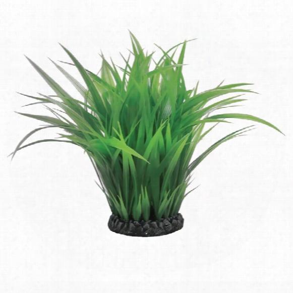 Biorb Easy Plant Aquatic Grass Ring Small