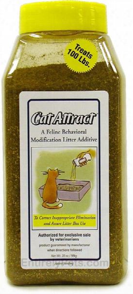 Cat Attract (20 Oz)