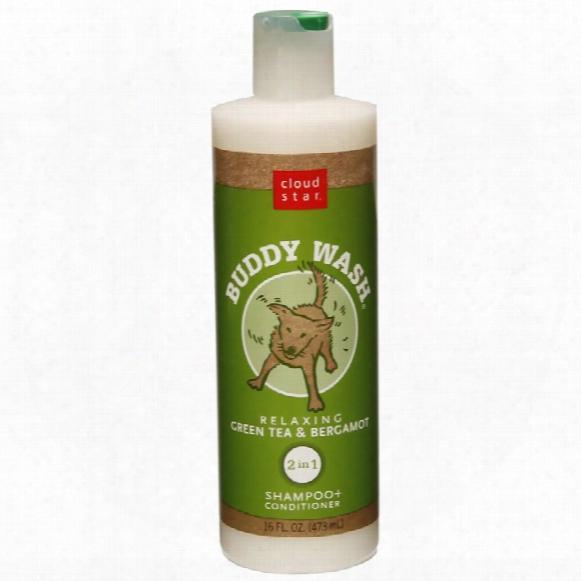 Cloud Star Buddy Wash Dog Shampoo & Conditioner - Green Tea (16 Oz)