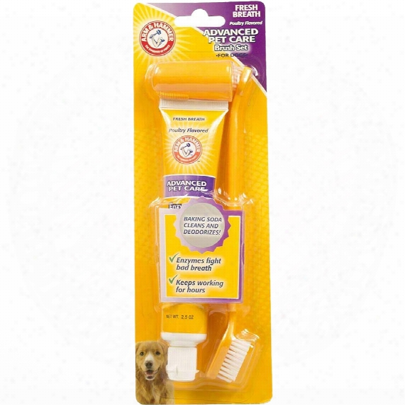 Arm & Hammer Dental Toothbrush Set For Dogs - Chicken Flavor
