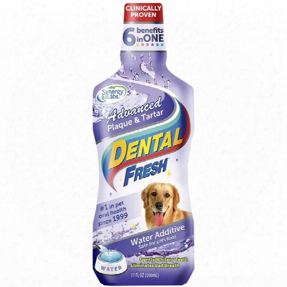Dental Fresh Advanced Plaque & Tartar Water Additive For Dogs (17 Fl Oz)