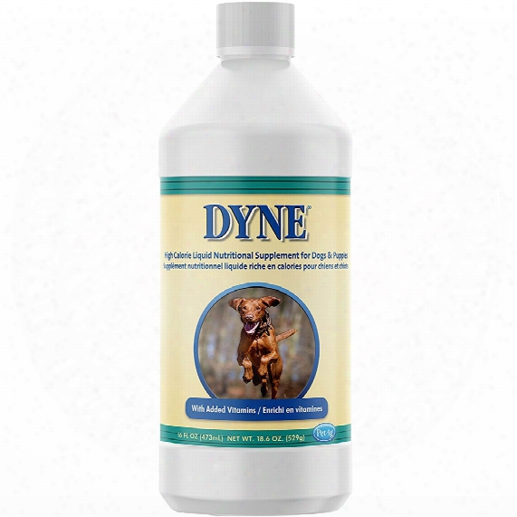 Dyne High Calorie Liquid For Dogs (16 Oz)