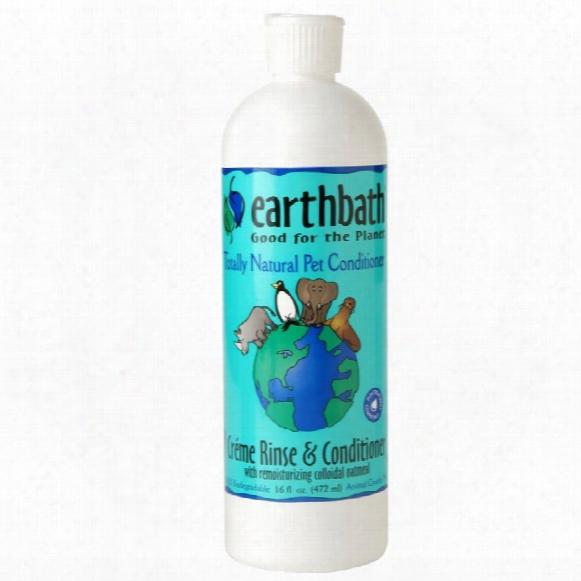 Earthbath Oatmeal & Aloe Conditioner (16 Fl Oz)